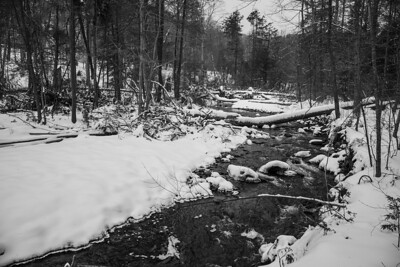 A snow and ice capped stream meaders through the woods.